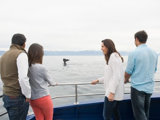 People & Whale 10 - HIGH RES - CCT