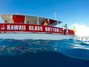 hawaii_glass_bottom10