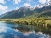 Jucy Milford Sound (5)