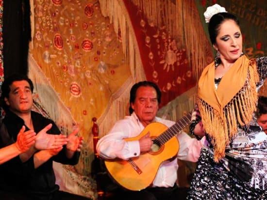 Authentic Flamenco show, Madrid, Spain