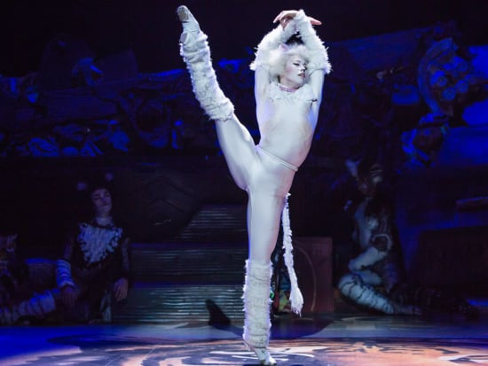 Tyler_Hanes_as_Rum_Tum_Tugger_in_CATS_on_Broadway_Photo_by_Matthew_Murphy (1)-crop