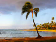 USA_Hawaii_Waimea_Beach