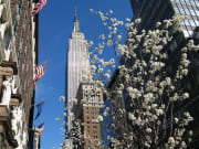 USA_New York_Empire State Building_From the Street