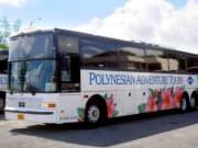 Polynesian Adventure Tours 16