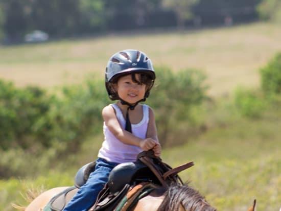 japanese child pony ride