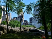 USA_New York_Central Park_Bike Tour_Sightseeing