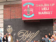 New York_Hush Tours_Birthplace of Hip Hop Harlem