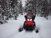 Snowmobile excursion, safari, Lapland