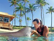 USA_Hawaii_Waikoloa-Dolphin-Swim