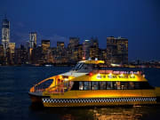 USA_New York_Statue by Night_Water Taxi