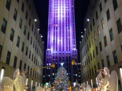 USA_New York_OnBoard Sightsee_Rockefeller Center