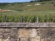Burgundy Domaine de la Romanee Conti