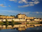 Vue générale du château royal d'Amboise