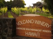Hawaii_Big Island_Kapohokine_Volcano Winery