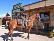 USA_Arizona_Grand Canyon West Rim Tour Mustangs
