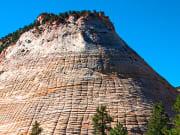 USA_Utah_Zion National Park_Checkerboard Mesa