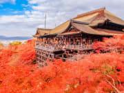 Kiyomizudera autumn leaves cropped