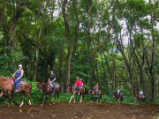 Hawaii_Big Island_Waipio on Horseback