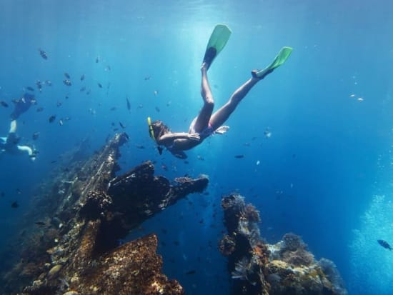 Cebu Nalusuan Island Snorkeling