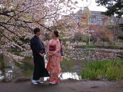 kimono studio