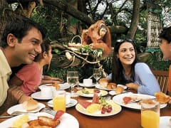 Singapore Zoo Jungle Breakfast