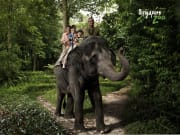 singapore_wrs_singapore-zoo-park_property-of-WRS_SZ Elephant Ride_with-logo-01