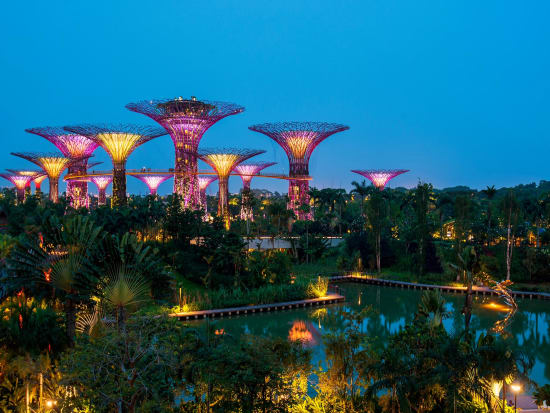 Marina Bay Singapore Food Night Out with Gardens by the Bay and ...