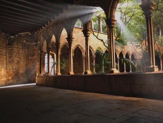 The Cloister  XV