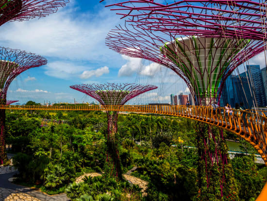 Singapore Gardens By The Bay Conservatory Tickets With Hotel Pick Up
