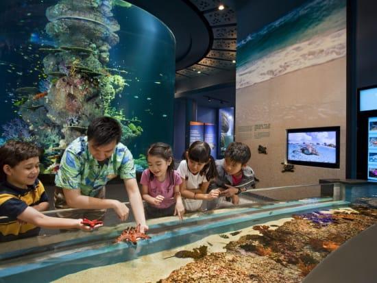 Sentosa_Singapore_SEA_Aquariumtrade (2)
