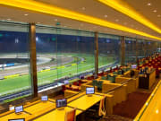 Go Racing At The Singapore Turf Club