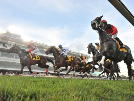 Singapore Horse Race Viewing Experience with VIP Lounge Access & Hotel  Transfers Instant Confirmation
