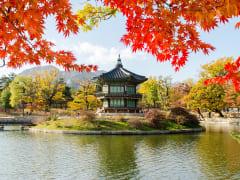 korea-seoul-full-day (8)