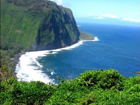ハワイ(ハワイ島)旅行の観光・...