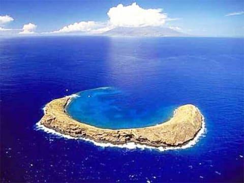 モロキニ島シュノーケリング