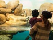 USA_San Francisco_Aquarium of the Bay