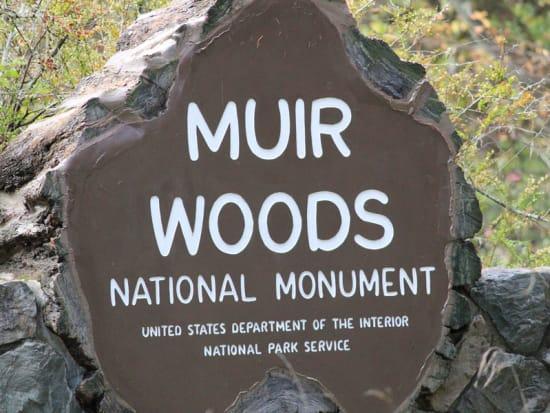 USA_San Francisco_Muir Woods National Monument