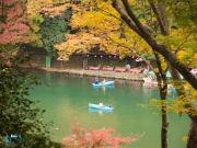 17_11_2016 Arashiyama 45_1