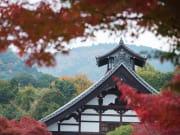 17_11_2016 Arashiyama 74_1