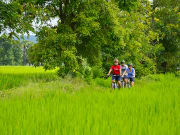 chiang mai bike and zipline tour countryside paths