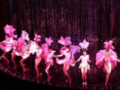 calypso cabaret2
