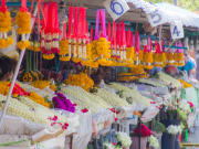 Taste of Chiang Mai Food Tour (4)