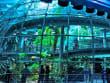 USA_California_Academy of Sciences_Nightlife Tour