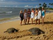 Blue Hawaii Photo Tours, 1