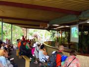 Brisbane_with_Koala_Sanctuary (4)