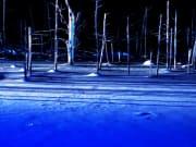 雪の青い池ライトアップ