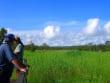 Litchfield_National_Park (6)