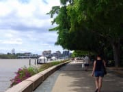 Brisbane City Tour