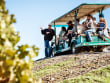 USA_California_Napa and Sonoma Wine Tour