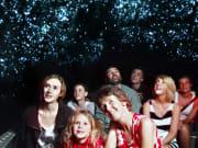 Waitomo Glowworm Caves (5)